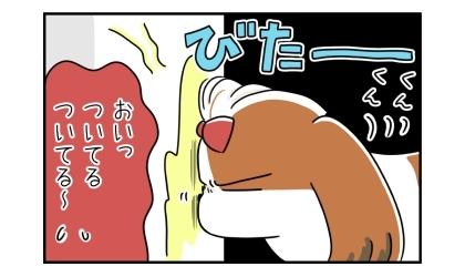 電柱の犬のおしっこの臭いを嗅ぐのに夢中で、おでこがおしっこにくっついてる犬。くんくん。おいっ、ついてるついてる~