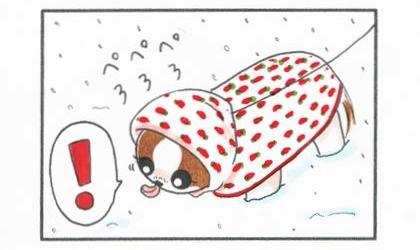 雪はおいし♪-2