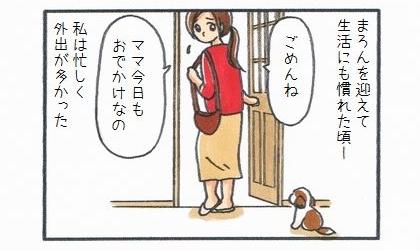 犬を迎えて生活にも慣れた頃、私は忙しく外出が多かった。ごめんね、ママ今日もお出かけなの