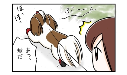 犬と蚊 1