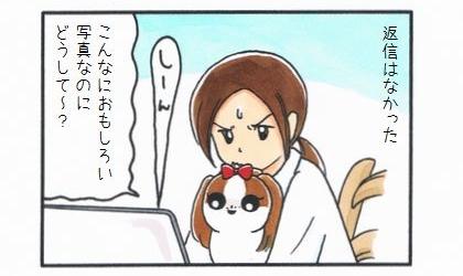うんこきゅうり-4
