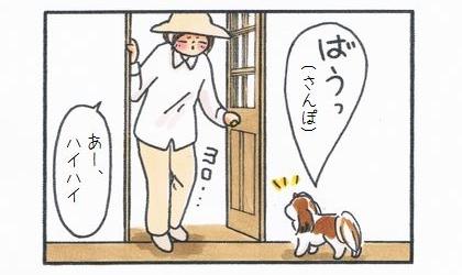 草むしりを終えて家の中に入ると犬が散歩のおねだり。あー、ハイハイ