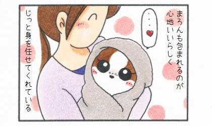 愛犬を「包んで」みよう♪-3