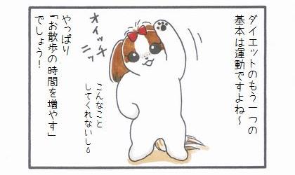 まろんダイエット作戦☆運動-1