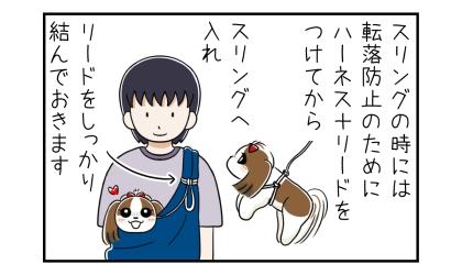スリングの時には転落防止のためにハーネスとリードをつけてから犬をスリングへ入れ、リードをしっかり結んでおきます