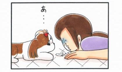 くしゃみ-4