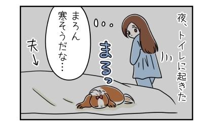 夜、トイレに起きた。夫の布団の上で犬が寒そうに丸まっていた