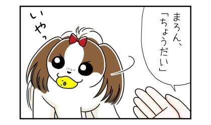 おもちゃを咥えた犬に「ちょうだい」と手を出すが、犬はおもちゃを渡さない