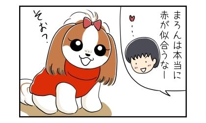 赤いセーターを着た犬を見て、本当に赤が似合うなー、と夫