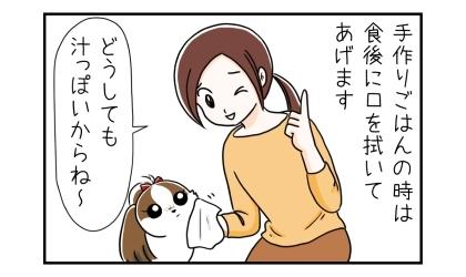 犬が手作りのご飯の時は、食後に口を拭いてあげます。どうしても汁っぽいからね~