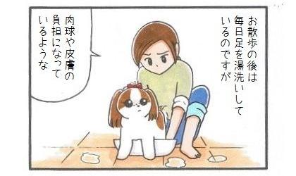 犬靴下に挑戦!-1