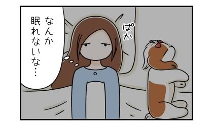 犬と一緒に寝ていたが夜中に目が覚める。なんか眠れないな…