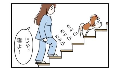 犬と私、階段を昇って2階の寝室へ向かう
