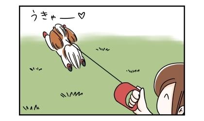 伸縮リード(フレキシリード)で公園を自由に走り回る犬。それを見て微笑む飼い主
