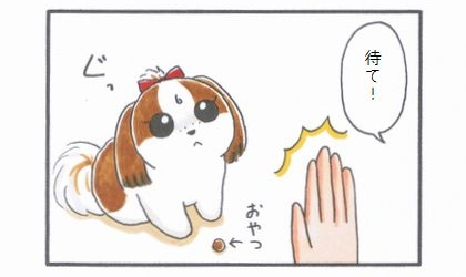 まろんダイエット作戦☆ダイエット中の「待て!」-1