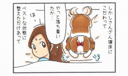 しかし、犬がさんざん寝床にこだわってベストな状態に整えただけあって。やっと落ち着いたか…