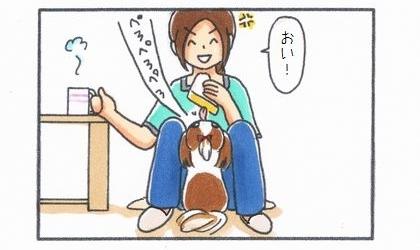 犬が卵サンドをぺろぺろ舐めつづめる。おい!怒る飼い主