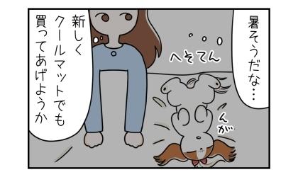 へそてんで寝る犬。暑そうだな…、新しくクールマットでも買ってあげようか