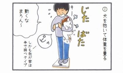 まろんダイエット作戦☆犬の体重の量り方-1