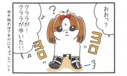 犬靴に挑戦!!!-3