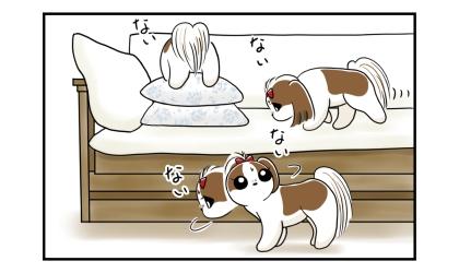 馬アキレスを探す犬、ソファの上、クッションの裏、ソファの下