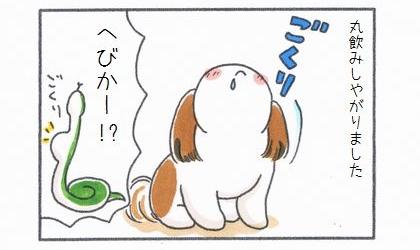 犬はおやつを丸飲みしやがりました。蛇かー!?