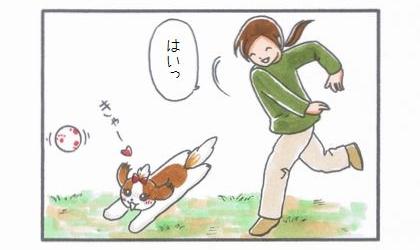 ドッグランでボール遊び!?-2
