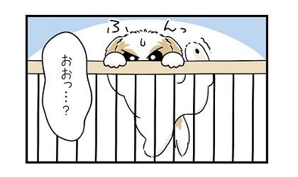 跳躍力e 4コマ犬漫画 ぷりんちゃんねる