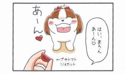 プチトマトLove -石ちゃん編--1