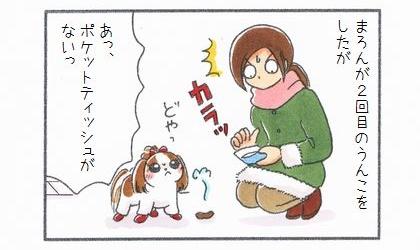 犬が2回目のうんこをしたが、あっ、ポケットティッシュがないっ