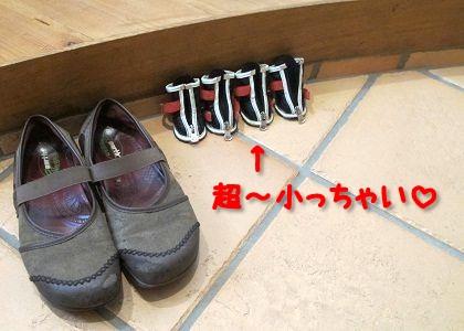 超ミニミニの犬靴