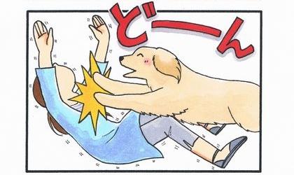大型犬の威力-3
