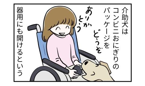 介助犬はコンビニおにぎりのパッケージを器用にも開けるという。どうそ、おにぎりを差し出す犬。ありがとう、車椅子の人
