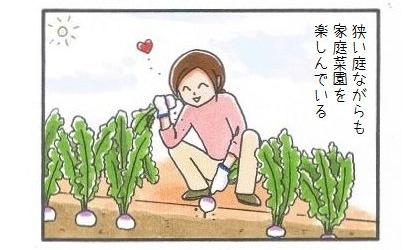 まろんの監視付家庭菜園-1