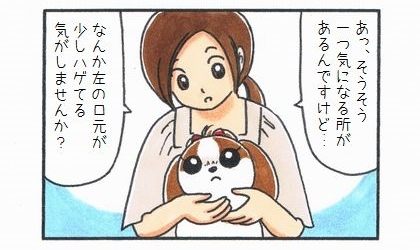 犬の健康診断の時に獣医さんに聞いた。あっ、そうそう、一つ気になる所があるんですけど…。なんか左の口元が少しハゲてる気がしませんか?