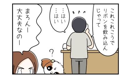 動物病院へ電話して状況説明、犬がリボンを飲みこんじゃって…。大丈夫なのー、犬が心配な飼い主