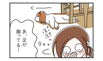 椅子の脚に両足をキチンと揃えて寝ている犬を見て笑う飼い主。あ、足が揃ってるー