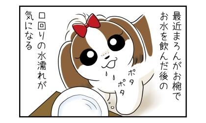 最近犬がお椀でお水を飲んだ後の口回りの水濡れが気になる