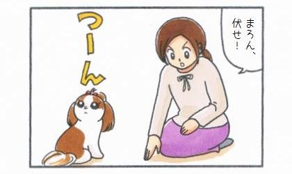 伏せ!そっぽを向く犬