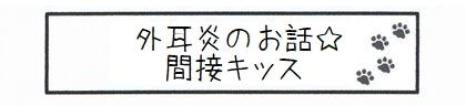 外耳炎のお話☆間接キッス-0