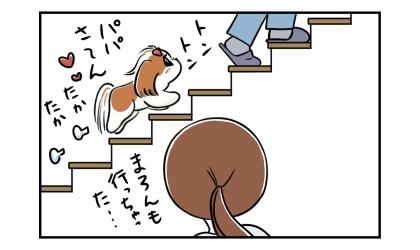 階段を昇って二階の寝室へ寝に向かう夫。犬もついていった