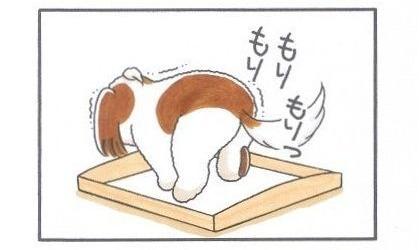 キレてな~い-2