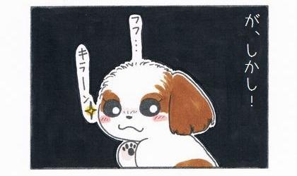 が、しかし!犬が暗闇ほくそ笑む。目がキラーン