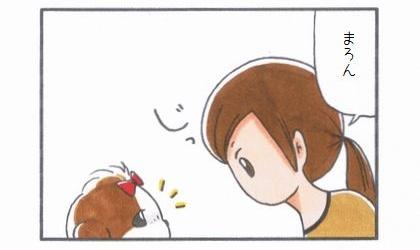 「目をそらす犬」-2