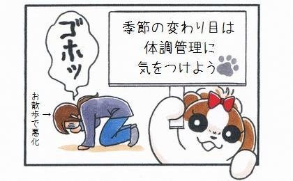 季節の変わり目は体調管理に気をつけよう。犬のお散歩でさらに体調が悪化する飼い主