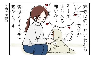 寒さに強いといわれるシーズーですが、実はメチャクチャ寒がりです。(我が家調べ)犬をひざ掛けでくるんで、寒いか~