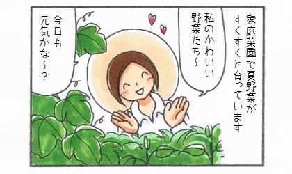 家庭菜園で夏野菜がすくすくと育っています。私のかわいい野菜たち~、今日も元気かな~