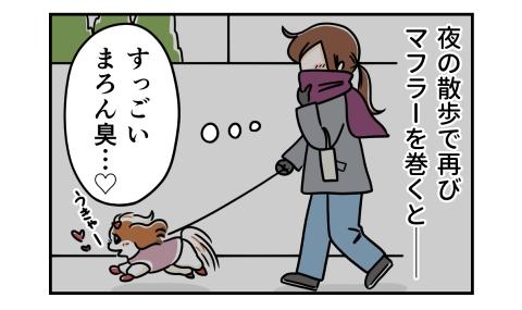 夜の散歩で再びマフラーを巻くとすごい犬臭い
