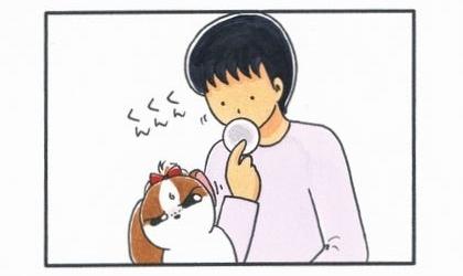 夫の耳掃除-3