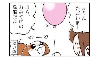 ただいまー、ほら、おみやげの風船だよー。風船を見て喜ぶ犬